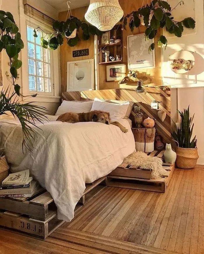 我想有个小卧房,喝茶读书日月长